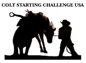 Colt Starting Challenge USA Logo
