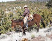 R Lara Trail Photo
