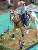 Model Horse Show Performance